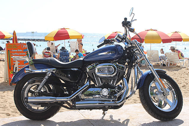 XL 1200C BLUE (Sportster Custom)